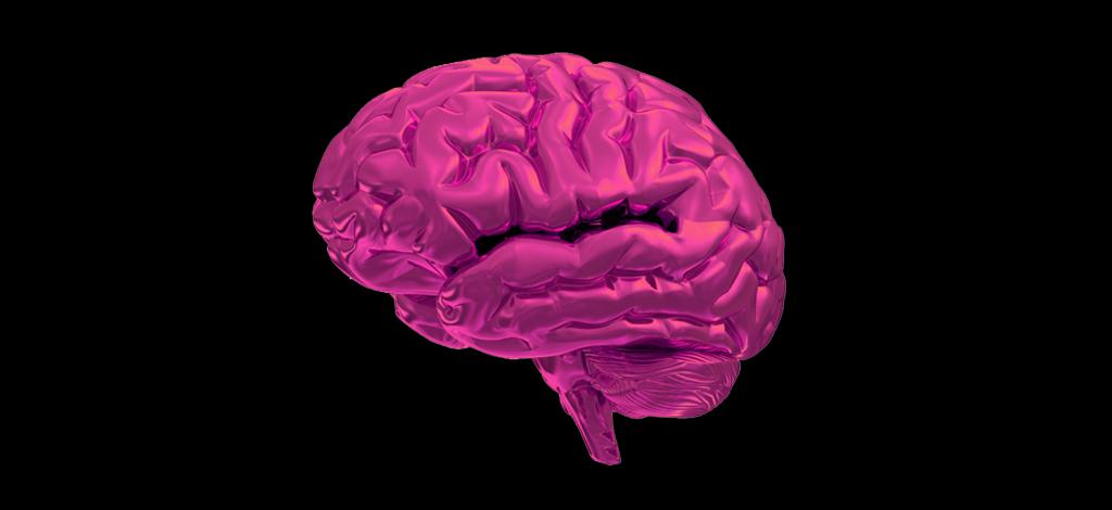 Cerebro-INT