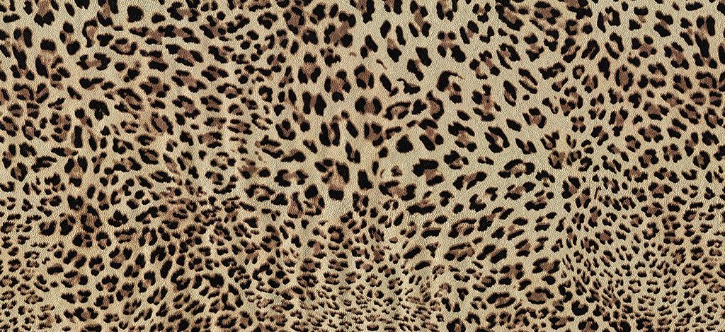 Cosas-que-rugen-soy-cougar-1024x470