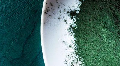 espirulina en un plato y fondo verde