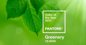 color-del-2017